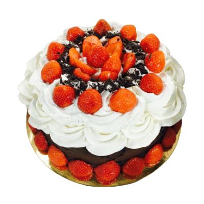 taart taarten taartenwinkel patisserie haarlem